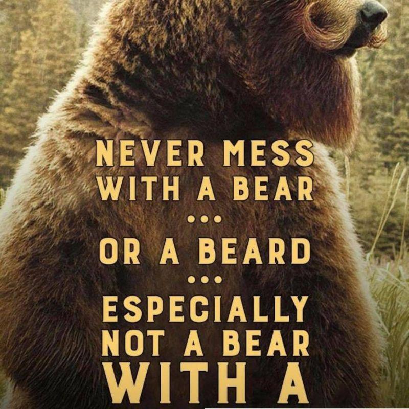 Bear2502